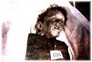 RMS_Lusitania_sinking_victim_Edgar_Palmer_-_c._19150507